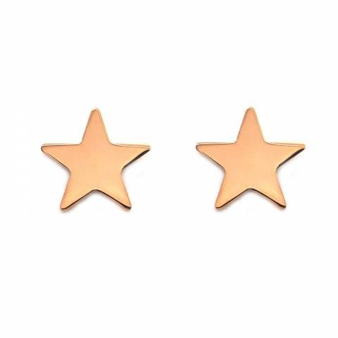 Orecchini a lobo argento 925 oro rosa stella grande